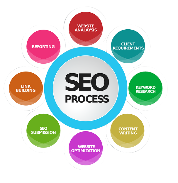 Affordable SEO Expert Services in USA | Apex Infoserve